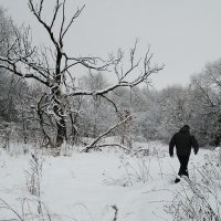 Снежный человек :: korgen