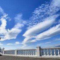 Белое пушистое по небу летит...(загадка) :: Валерий Дворников