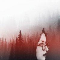 forest :: Kelly Caffeine