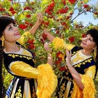 Красна ягодка :: arkadii