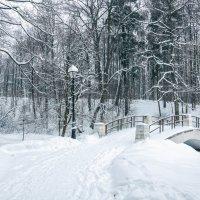 Зима в Царицыно :: Игорь Капуста