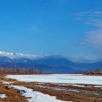 Весенний пейзаж :: Анатолий Иргл