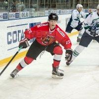 Медведи... :: Кирилл Богомазов