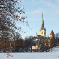 Таллин. Эстония :: Валерий Подорожный