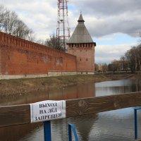 Не выходи на лед! :: Татьяна Панчешная
