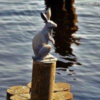 Хозяин Заячьего острова... :: Sergey Gordoff