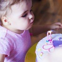день рождения :: Юлия Трибунская