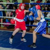 Бокс :: Кирилл Богомазов