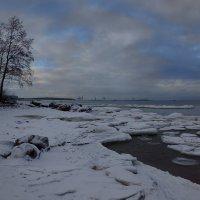 Финский залив :: Alex