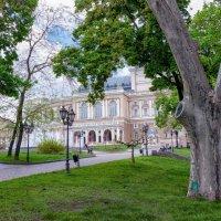 Апрель в Одессе. :: Вахтанг Хантадзе