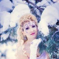 Зима во всей красе :: Наталья Долотова