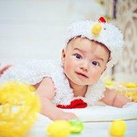 Цыпленок :: марина алексеева