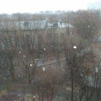 Апрельский снег :: Наталья Иль