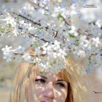 Пришла весна :: Анастасия