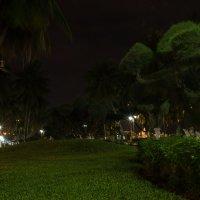 Ночной парк :: Ruslan