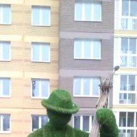 Зелёный музыкант :: Мила