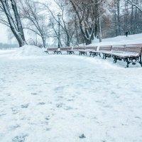 Зима в парке :: Игорь Капуста