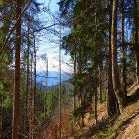 В Баварских Альпах... :: Galina Dzubina