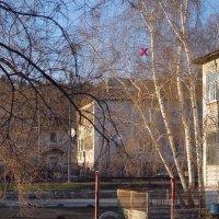 НЛО :: Валерий Лазарев