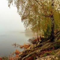 в тумане :: Василий Иваненко