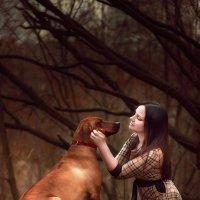 Моя собака :: Ирина Малина