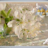 Сегодня светит солнце по-другому... :: Людмила Богданова (Скачко)