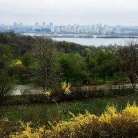 Ботанический сад. Апрель. :: Сергей Рубан