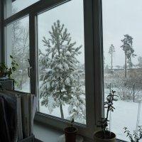Всю ночь 4 апреля шёл снег :: Галина