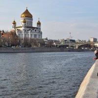 Вид с Береснёвской набережной. :: Татьяна Помогалова