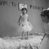 Свадебный переполох) :: Dmitriy Predybailo
