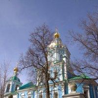 С  Вербным Воскресеньем!!! :: Валерий Самородов