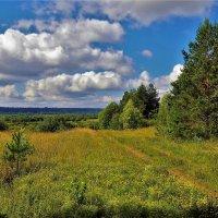 Дорога в любимое место... :: Sergey Gordoff