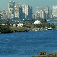 Пейзажный вид реки Нил и современной архитектуры Каира :: spm62 Baiakhcheva Svetlana