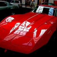 Chevrolet Corvette C3 Sting Ray, 1974 :: Tanja Gerster
