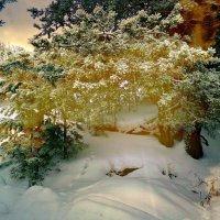 прощание с зимой :: ВладиМер