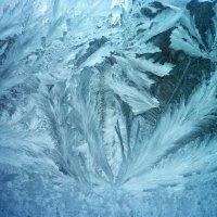 Холодная красота :: Тамара Лисицына