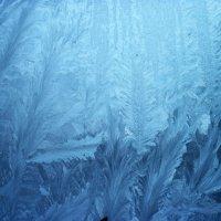 Ледяной лес :: Тамара Лисицына