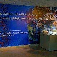 By exhibition halls ... to be continued ... По залам выставки ... продолжение следует ... :: Tatiana Golubinskaia
