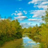 Речка в Волгоградской области :: Анастасия сосновская