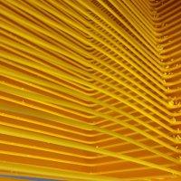 апельсиновая геометрия :: Мари B