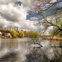весенний пейзаж-2 :: юрий иванов