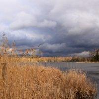 небо апреля :: liudmila drake