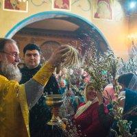 Вербное воскресение :: Сергей Воробьев