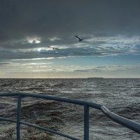Белое море :: Павел Харлин