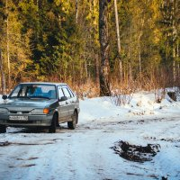 Зимний лес :: Виктория Грибина