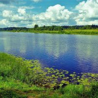 Прекрасная Молога река... :: Sergey Gordoff