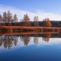 река Нерль около д.Марково :: Геннадий Тарасов