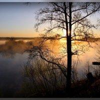 рассвет на Нерли :: Геннадий Тарасов
