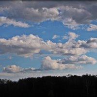 Небо :: Алина Веремеенко