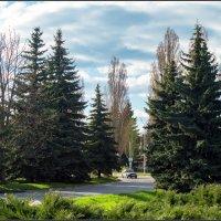 Зелёный уголок Курчатова :: Александр Лихачёв